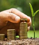 Cổ đông và nhà đầu tư