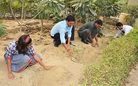 India – Trồng cây bảo vệ mảng xanh đô thị tại thành phố vệ tinh Gurgaon (Environmental Conservation)
